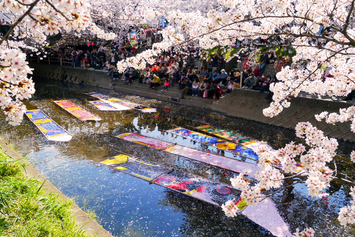 愛知県岩倉市 五条川ののんぼり洗いの画像です。