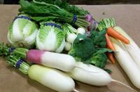 季節の野菜詰め合わせへのリンク