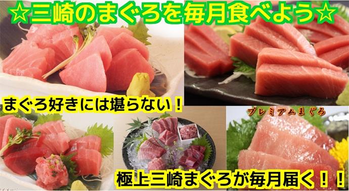 神奈川県三浦市ふるさと納税返礼品「三崎のまぐろを毎月食べよう」