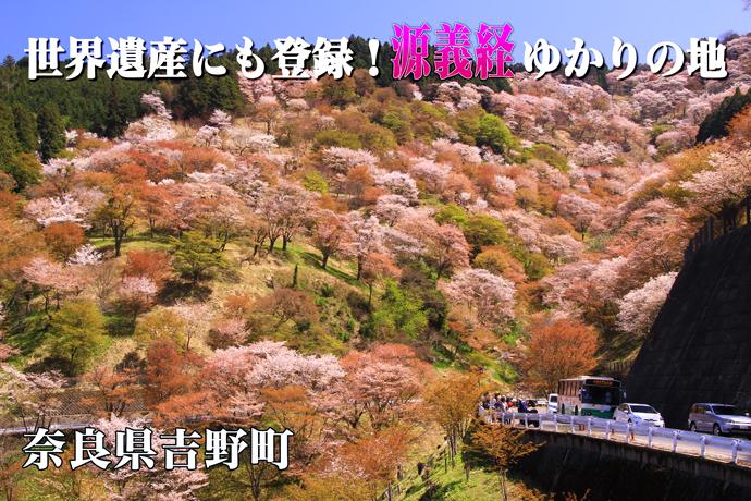 奈良県吉野町トップ