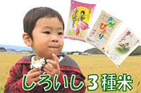 佐賀県白石町のお米へのリンク