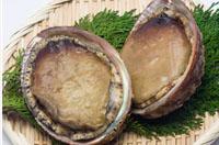 勝浦市で獲れる人気の貝セットへのリンク