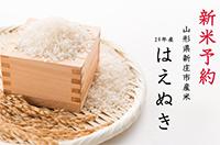 【平成29年産新米予約1月発送分】新庄産米「はえぬき」(精米)20kg(寄付金額 10,000円)へのリンク