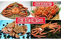 ふるさと納税返礼品 定期便 富山県射水市 新湊産 カニ食べ比べ