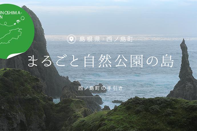 島根県西ノ島町ふるさと納税